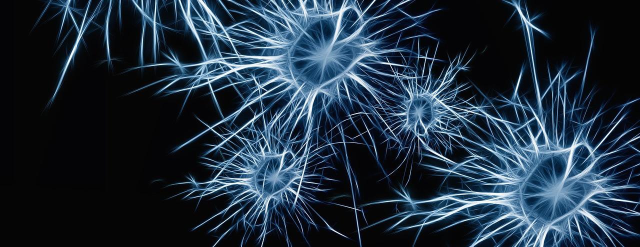 Neuroner danner angst. Opløs angst med Bilateral stimulering. Hypnose mod angst.